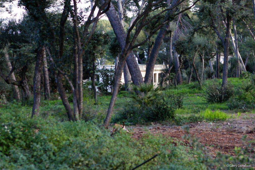 Avenue des Chênes Verts Cap Antibes